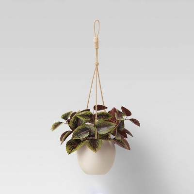 Ceramic Base Hanging Planter - Threshold™