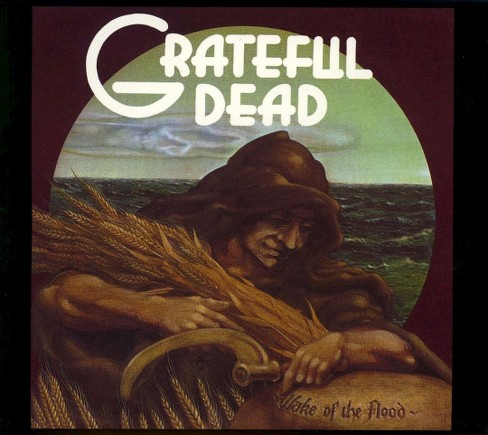 Grateful dead - Wake of the flood (CD) - image 1 of 1