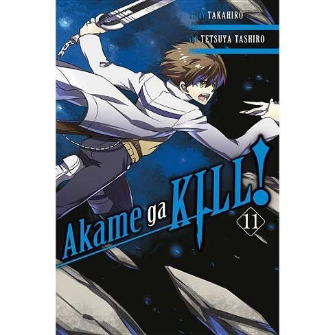 Akame Ga Kill!, Volume 11 - by  Takahiro (Paperback) - image 1 of 1