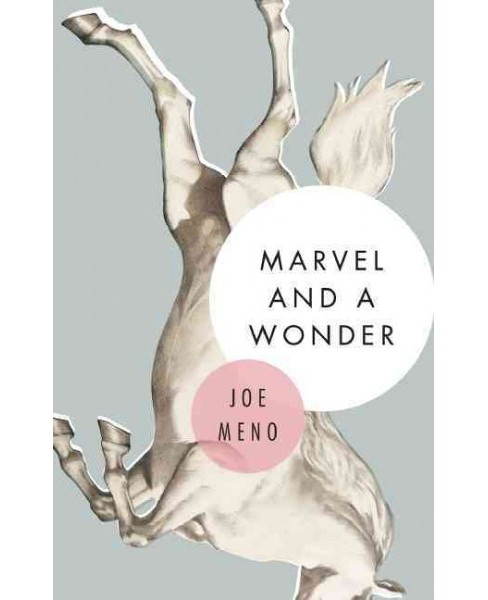 Marvel and a Wonder (Paperback) (Joe Meno) - image 1 of 1