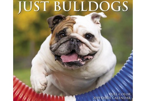 Just Bulldogs 2019 Calendar -  (Paperback) - image 1 of 1
