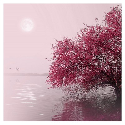 Full Moon on the Lake' by Philippe Sainte-Laudy Ready to Hang Canvas Wall Art