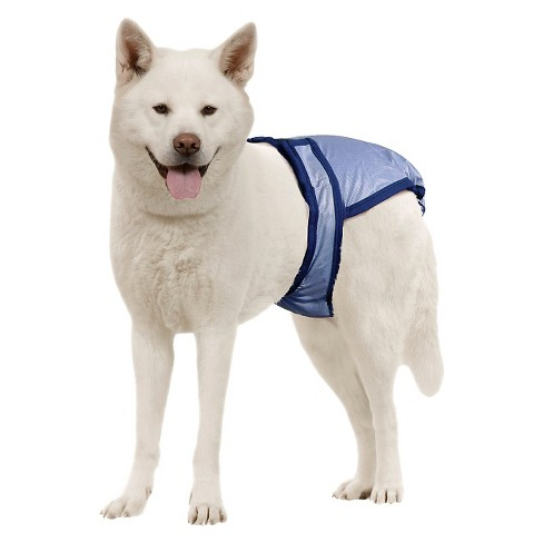 PoochPants Diapers for Pets - Blue - image 1 of 1