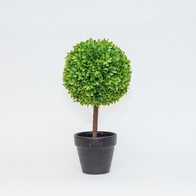 Artificial Plant Boxwood - Lloyd & Hannah