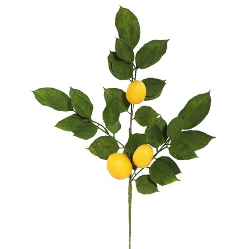 """Vickerman 20"""" Artificial Green and Yellow Salal Leaf Lemon Sprays. Pack of 4. - image 1 of 4"""