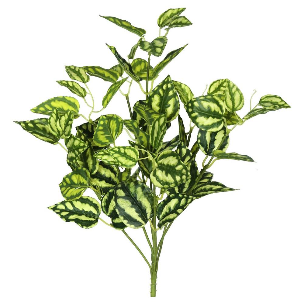 "Image of ""Artificial Peperomia Bush (17"""") Green/White - Vickerman"""