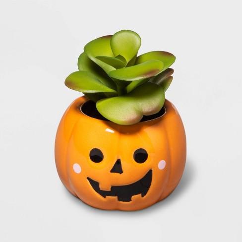 Halloween Orange Jack-O'-Lantern Succulent - Hyde & EEK! Boutique™ - image 1 of 1