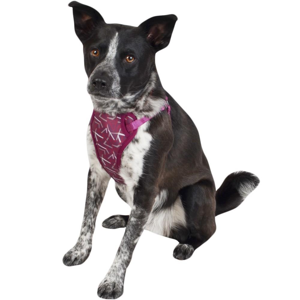 Cat & Dog Harness - Plum - Medium - Boots & Barkley