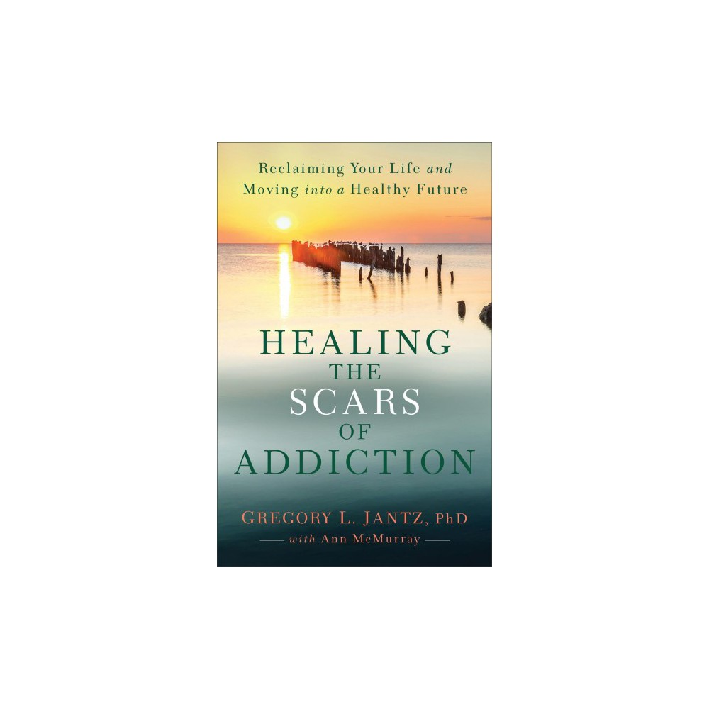 Healing the Scars of Addiction : Reclaiming Your Life and Moving into a Healthy Future - (Paperback)