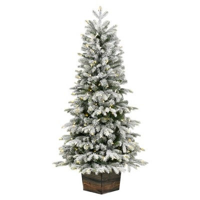 """Vickerman 5' x 32"""" Frosted  Wendell Slim Potted Pine Artificial Christmas Tree, Warm White Dura-lit LED Lights"""