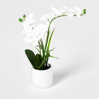 21  x 5  Artificial Orchid in Ceramic Pot White/Green - Threshold™