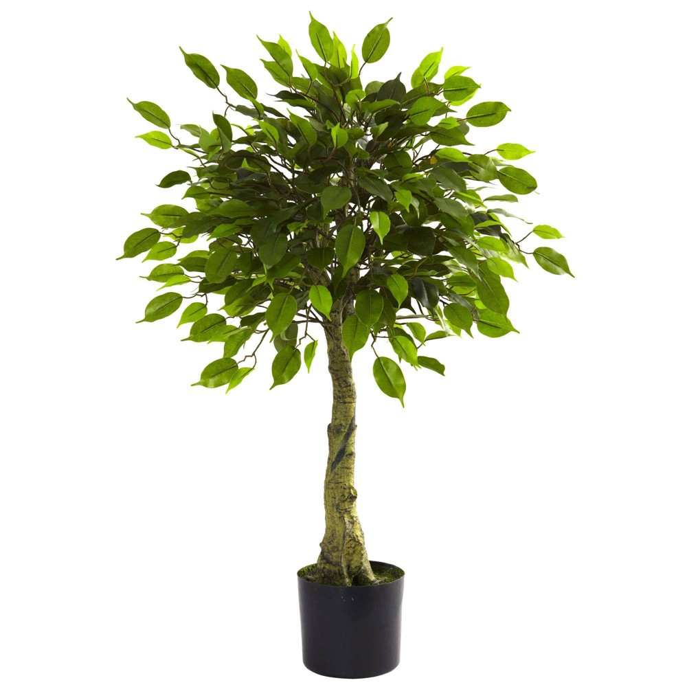 3 39 Ficus Tree Nearly Natural