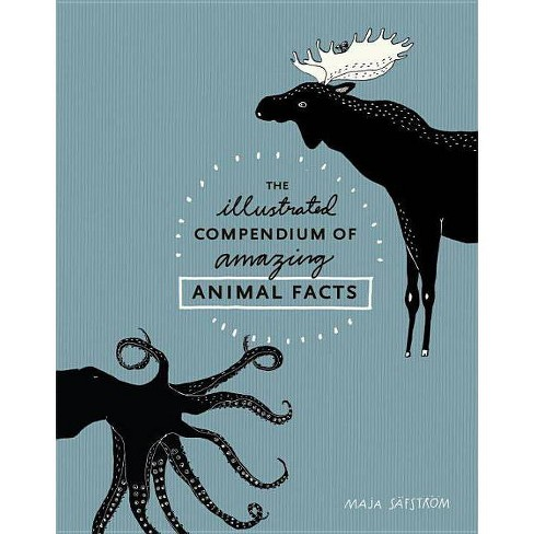 The Illustrated Compendium of Amazing Animal Facts - by  Maja Safstrom (Hardcover) - image 1 of 1