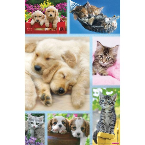 """34"""" x 23"""" Puppies and Kittens Collage Unframed Wall Poster Print - Trends International - image 1 of 2"""