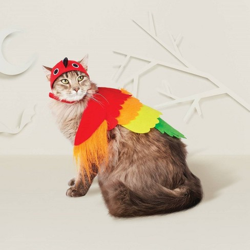 Parrot Cat Costume - Hyde & EEK! Boutique™ - image 1 of 1