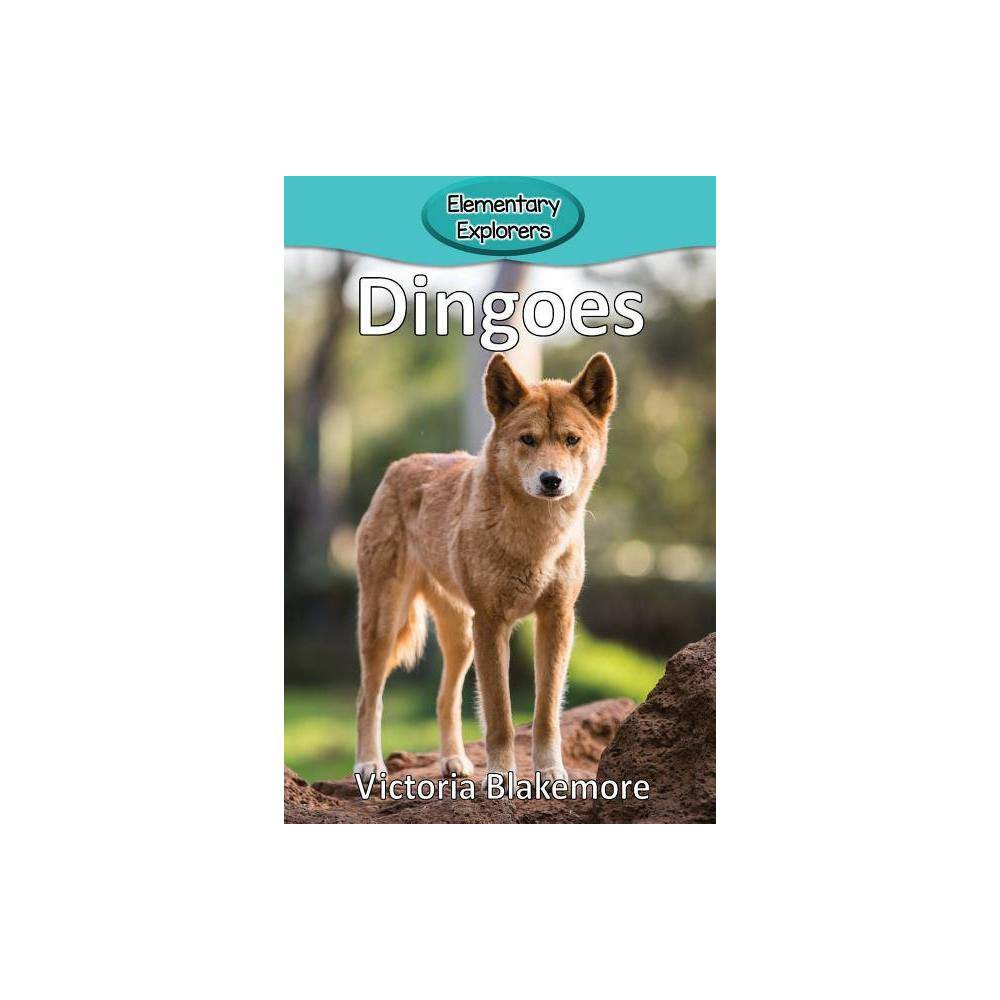 Dingoes Elementary Explorers By Victoria Blakemore Paperback