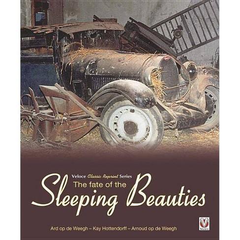 The Fate of the Sleeping Beauties - by  Ard Op de Weegh & Kay Hottendorff & Arnoud Op De Weegh - image 1 of 1