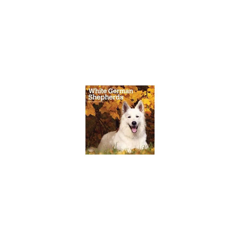 White German Shepherds 2019 Calendar - (Paperback)