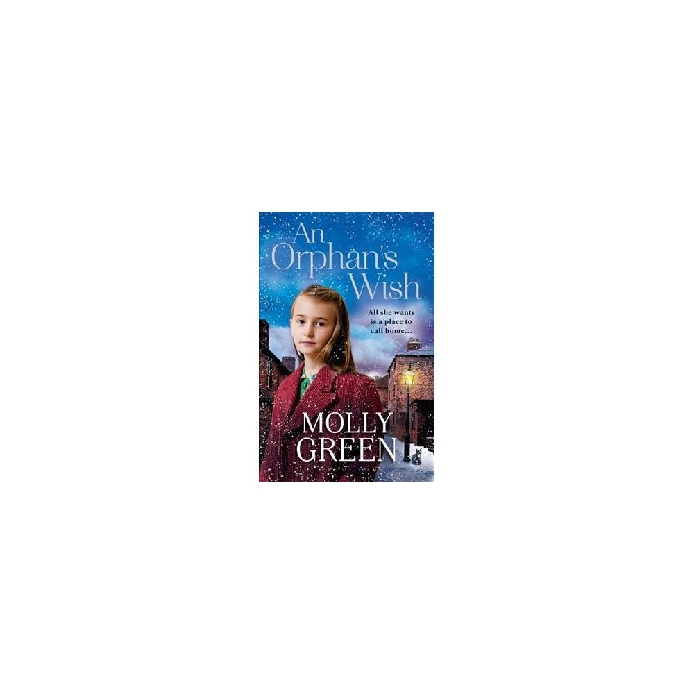 Orphan's Wish - by Molly Green (Paperback)