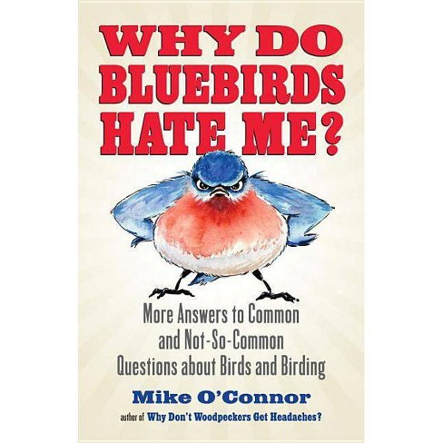 Why Do Bluebirds Hate Me? - by  Mike O'Connor (Paperback) - image 1 of 1