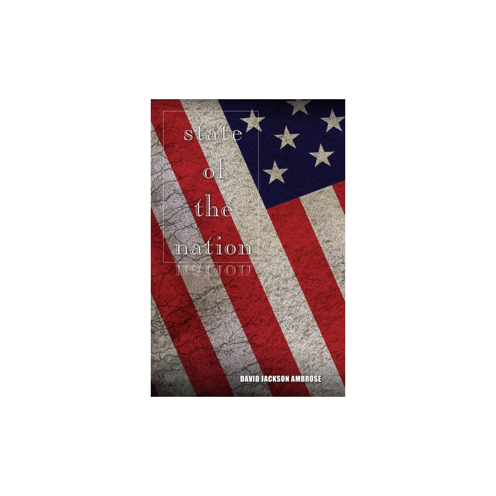 State of the Nation - by David Jackson Ambrose (Paperback)
