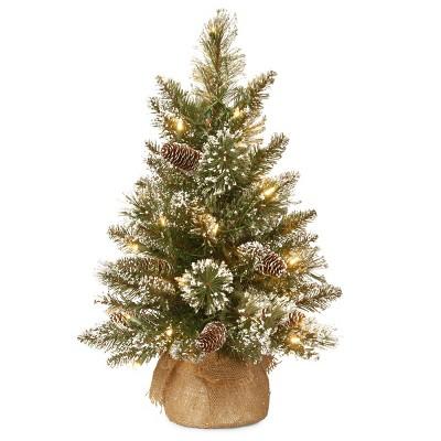 2ft National Christmas Tree Company Glittery Bristle Pine Artificial Christmas Tree 15ct Warm White LED