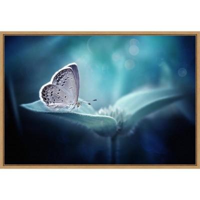 "23"" x 16"" Butterfly and Blue Flower by Fauzan Maududdin Framed Wall Canvas - Amanti Art"
