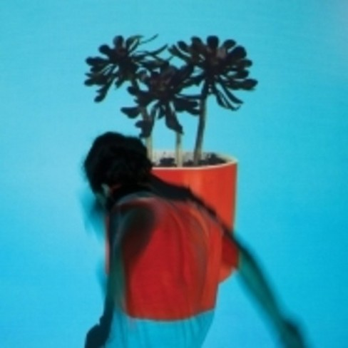 Local natives - Sunlit youth (Vinyl) - image 1 of 1