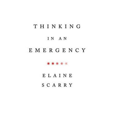 Thinking in an Emergency - (Amnesty International Global Ethics) by  Elaine Scarry (Paperback) - image 1 of 1