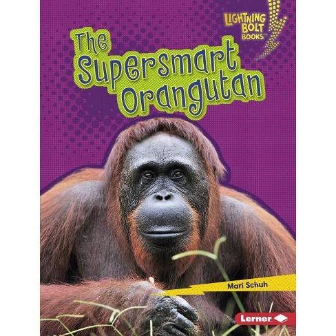 The Supersmart Orangutan - (Lightning Bolt Books (R) -- Supersmart Animals) by  Mari C Schuh (Hardcover) - image 1 of 1