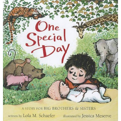 One Special Day - (Story for Big Brothers and Sisters) by  Lola Schaefer (Hardcover)