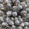 6ft Pre-lit Artificial Christmas Tree Flocked Slim Alberta Spruce Clear Lights - Wondershop™ - image 2 of 3