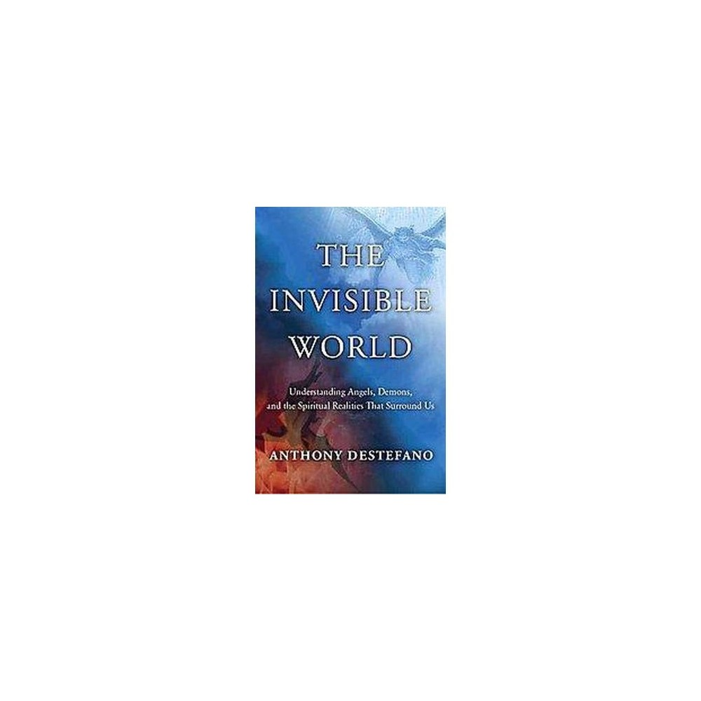 The Invisible World (Hardcover)