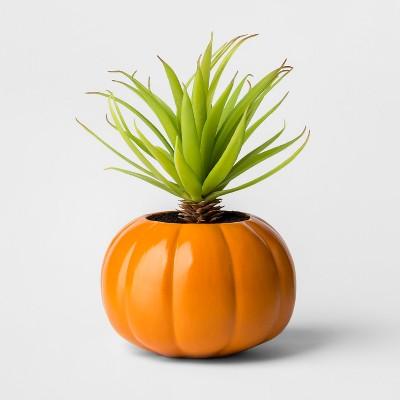 Halloween Pumpkin Succulent Orange - Hyde and Eek! Boutique™