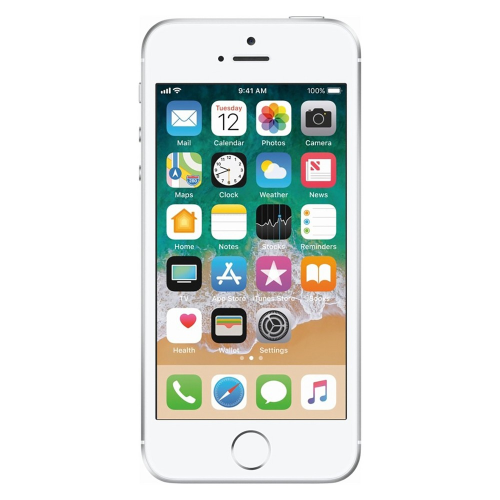 Apple iPhone SE (GSM Unlocked) 16GB Smartphone - Silver