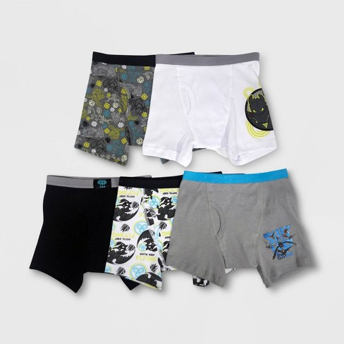 Boys' How to Train your Dragon 5pk Boxer Briefs - image 1 of 3