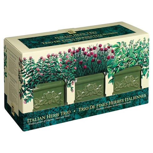 Toysmith Garden At Home Easy-To-Grow Italian Herb Set - image 1 of 2