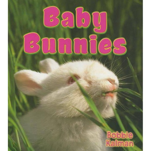 Baby Bunnies - (It's Fun to Learn about Baby Animals (Paperback)) by  Bobbie Kalman (Paperback) - image 1 of 1