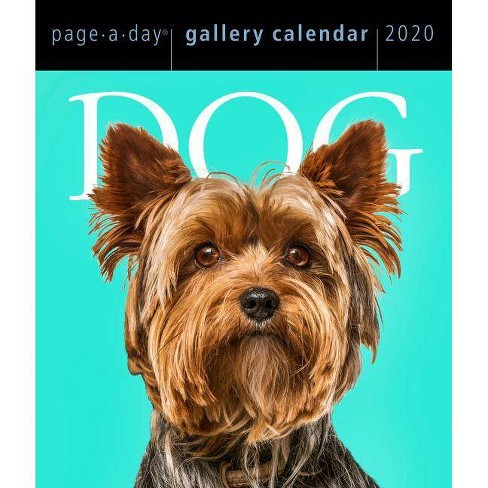 Dog Page-A-Day Gallery Calendar 2020 - image 1 of 1