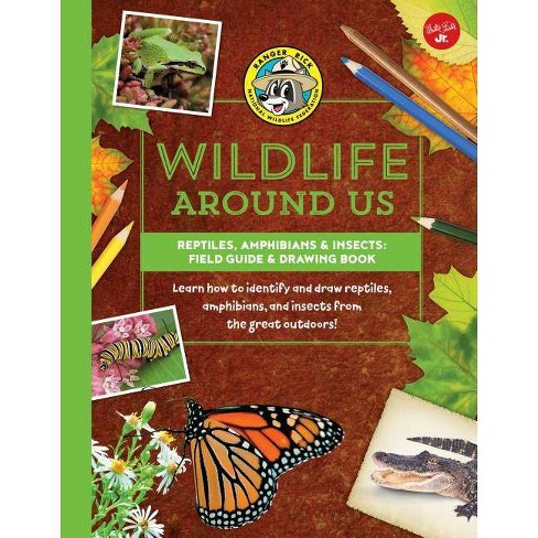 Reptiles, Amphibians & Insects--Field Guide & Drawing Book - (Ranger Rick's Wildlife Around Us) - image 1 of 1