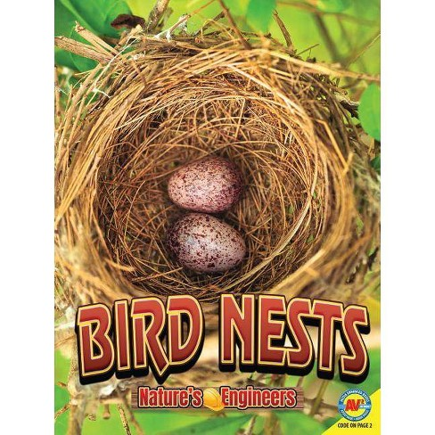 Bird Nests - (Nature's Engineers) by  Stacy Tornio (Paperback) - image 1 of 1