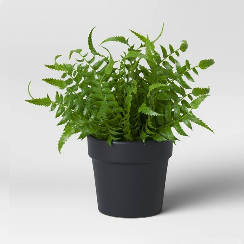 Faux Fern in Black Pot - Threshold™ - image 1 of 2