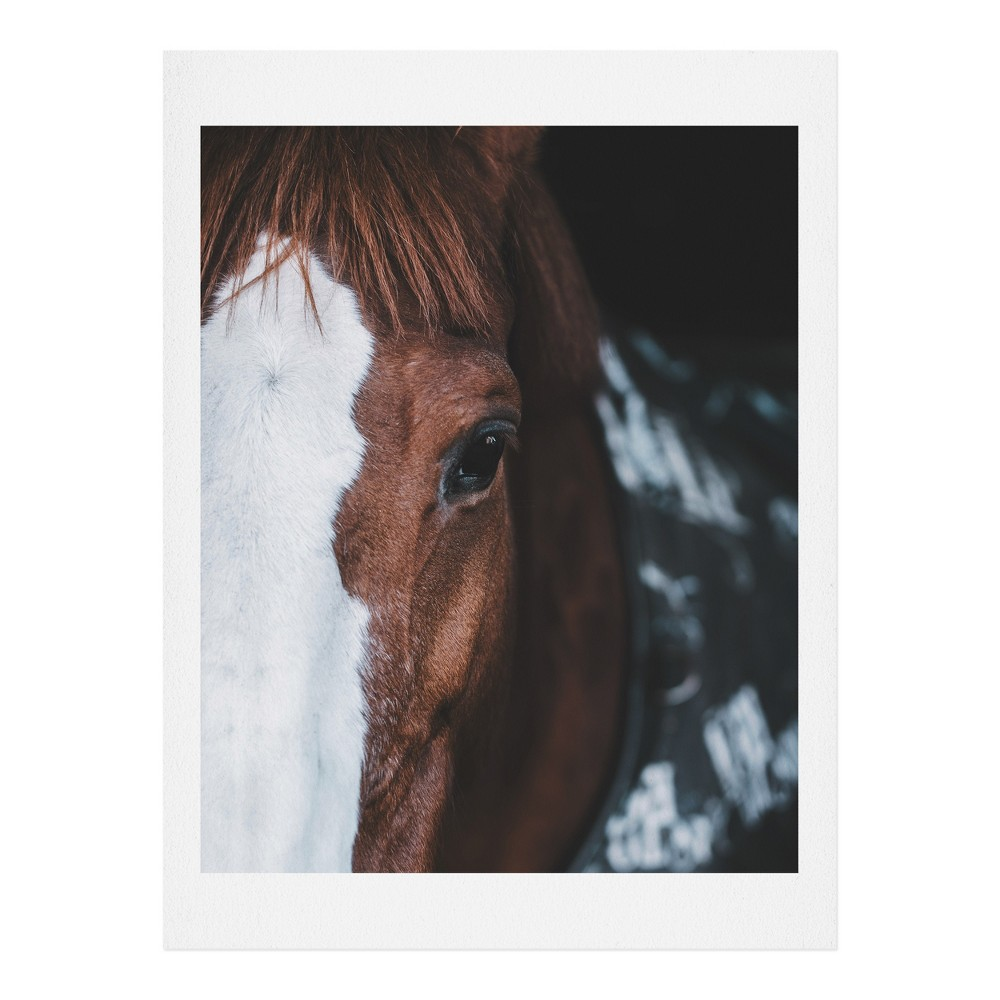 "Image of ""16""""x20"""" Ingrid Beddoes Horse Cheyenne Art Print Unframed Wall Poster Brown - Deny Designs"""