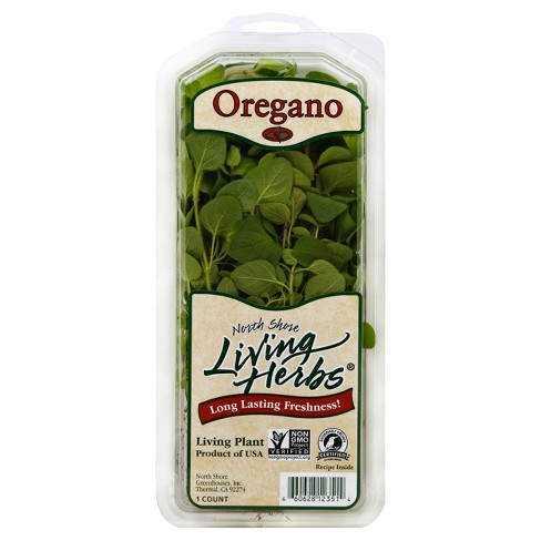 North Shore Living Herb Oregano Clamshell - 1ct - image 1 of 2