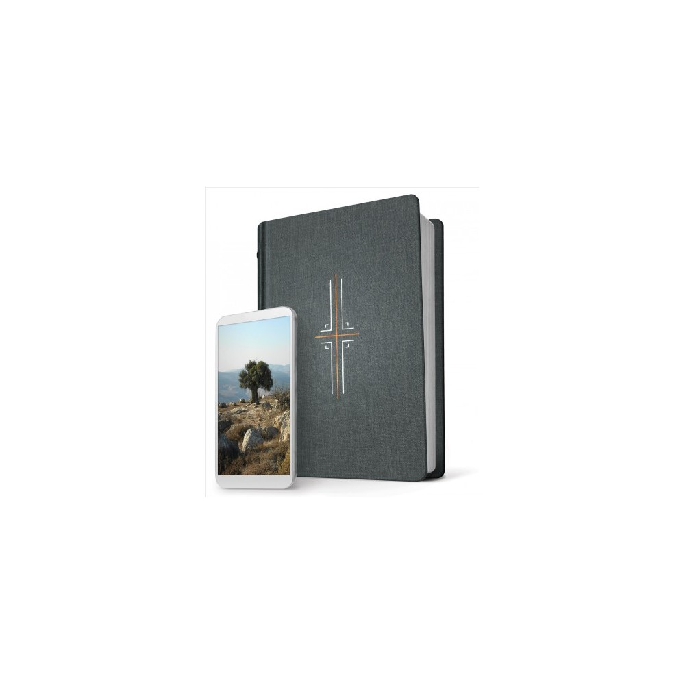 Holy Bible : New Living Translation, Gray, Filament Edition - (Hardcover)