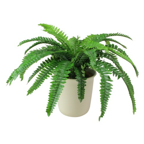 Northlight 24 Boston Fern Artificial Potted Plant Green White