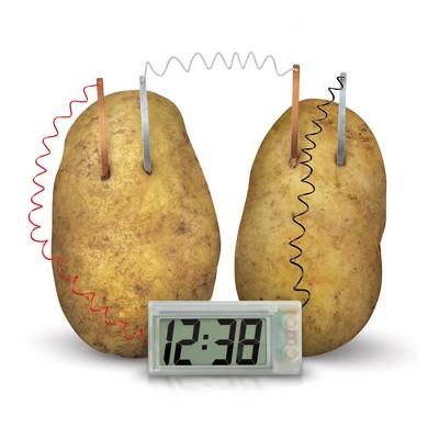 Toysmith 4M Green Science Digital Potato Clock