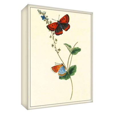 """11"""" x 14"""" Butterfly Nature I Decorative Wall Art - PTM Images"""