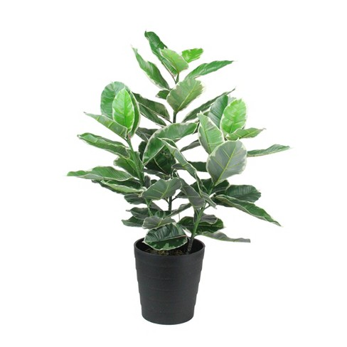Northlight 3.1' Unlit Green and Black Potted Artificial Plant - image 1 of 2