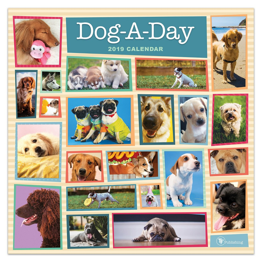 2019 Wall Calendar Dog- A-Day - TF Publishing, 2019 Tf Publishing Dog-A-Day Wall Calendar